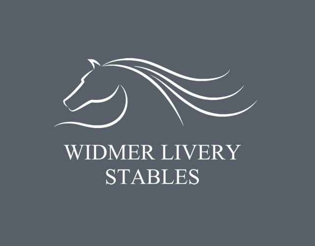 Logo Portfolio Image